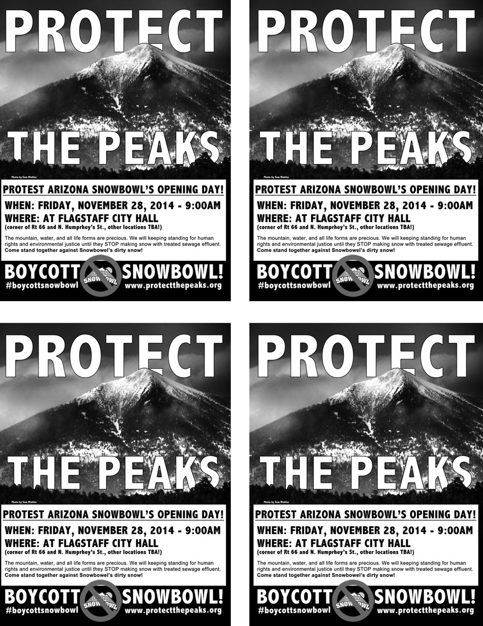 protect the peaks flyers snowbowl protest